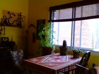 Sublet a nice flat Oct-Jan in Mile End Sous-louer appt agréable