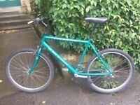 Green Raleigh Max bike. Runs well, just needs a little attention to make perfect.
