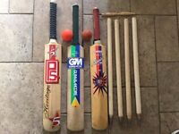Cricket Equipment for young player