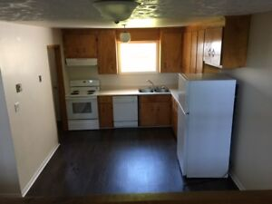 Fully Renovated Large 4 Bedroom Includes 5 Appliances & Parking
