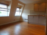 LOVELY AND BRIGHT FLAT AVAILABLE END OF JUNE IN FINSBURY PARK