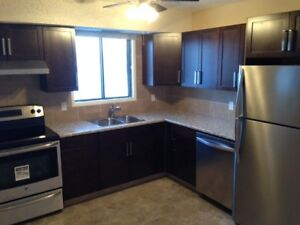Renovated 2-BR DOWNTOWN condo - $1350/$1300