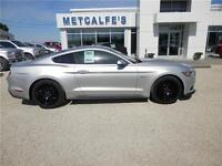 2015 Ford Mustang GT Premium 50th Anniversary Package
