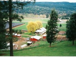 TERRIFIC OPPORTUNITY..! FAMILY FARM WITH SUBDIVISION POTENTIAL..