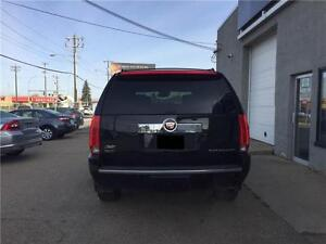2010 Cadillac Escalade FULLYLOADED, LOW KM, MINT, LOCAL, BSM Edmonton Edmonton Area image 4