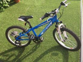 Child's 20' wheel bike