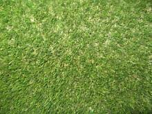 Fake Artificial Synthetic Grass Astro Turf Lawn Rolls - 3 Types Marrickville Marrickville Area Preview