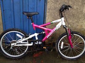 Girls Challenge Bicycle