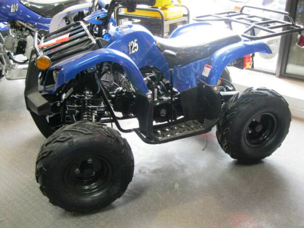 Used 2015 Taotao Destructeur 125 CC