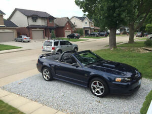 2002 Ford Mustang GT Convertible v8 standard Excellent condition
