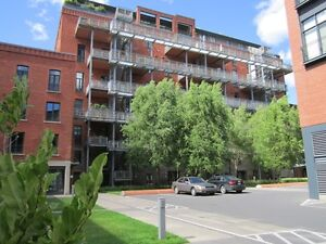 LUXURY accomodation Loft REDPATH, waterfront of Lachine Canal