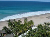 Beachfront Living on Playa Cerritos  Incredible 11th Floor Views