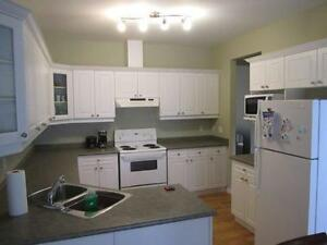 Large Bedroom Available for Rent in Downtown London London Ontario image 5