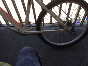 Diamond back dirt Jumper For Sale!! 8/10 Condition London Ontario image 3