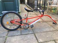 Cycle tag-along