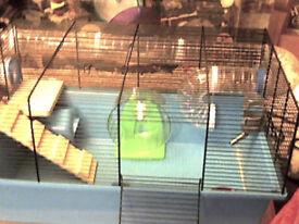 large fun hamster cage