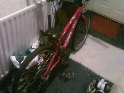 Boys Bike - Apollo Vortice 24 inch wheels red