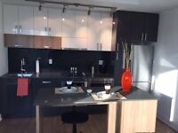 NEW IN EAST VILLAGE-ALL UTILITIES,PARKING & FURNISHINGS R INCLUD