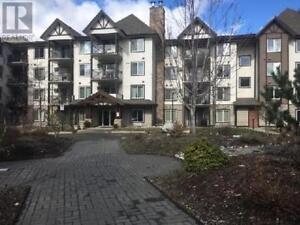 205 - 256 HASTINGS AVE PENTICTON, British Columbia