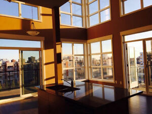 Executive 2 Bed, 2Bath Penthouse w/ Rooftop Patio in Oliver