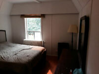 Now/ Dec 1-Nice furn rm in safe character home in central locn