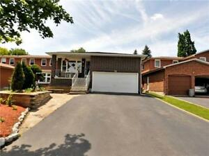 Totally Renovated Detached 5 Level Backsplit In Great Location!