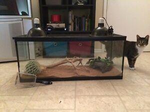 terrarium pour reptils