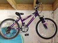 Apollo Girls Mountain Bike