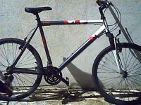 Mounting Bike Raleigh 4 sale