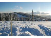 Home to be Built on Silver Star Mountain Resort