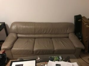 Lightly Used Sofa For Sale $100 or best offer