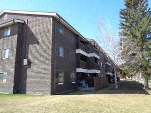 NEW PRICE!!  Looking for an Investment? 2 Bedroom Condo in Edson
