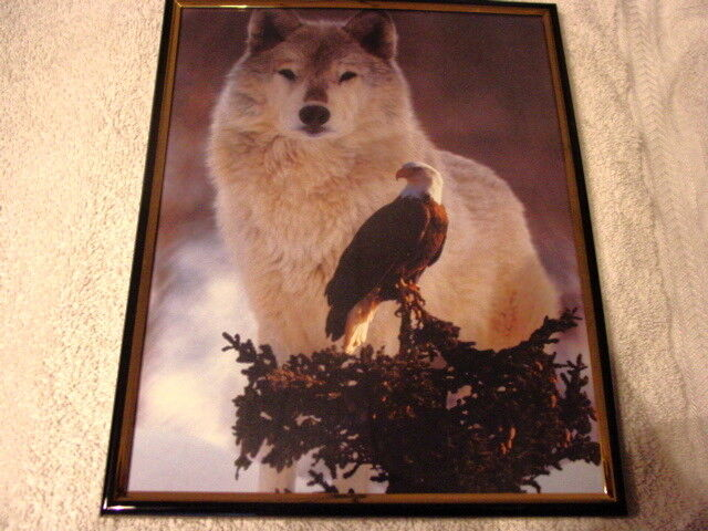 WOLF AND EAGLE 8X10 FRAMED PICTURE PRINT