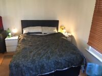 Large double room, only 15 mins walk to woking station + BILLS + BROADBAND