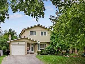 Fabulous Detached Home With Large Pie Shaped Yard, Don't Miss!