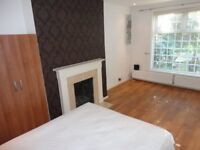 Beautiful modern double room in Crystal Palace. Early viewing recommended.