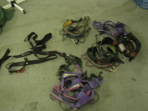 Climbing Harness's Recreational Sport XS/SM/M
