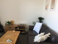 Bright two bedroom flat in Meadowbank