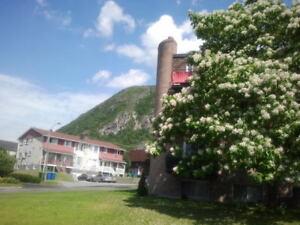 *LOGEMENT RÉNOVÉ* GRAND 4 1/2, Mont St-Hilaire