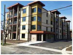 Beautiful Downtown St. Catharines Condo