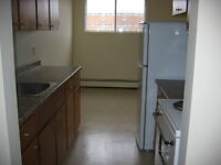 2BR - 2Bath Apartment Renovated – Laminate Flooring & Balcony