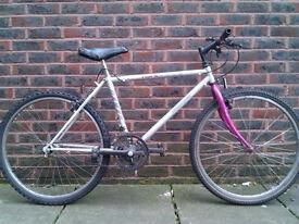 Dawes hardware single speed bike