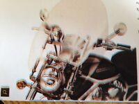 """HARLEY DAVIDSON parebrise """"clip on"""""""