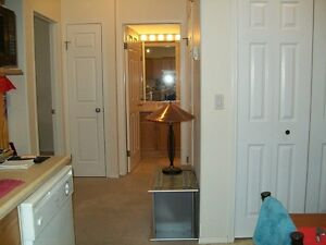 NEW PRICE   Looking for a Room  Mate DT Leduc Condo
