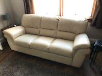 Reid's Leather Sofas