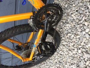 16.5'' frame barely used Rocky Mountain mountain bike for sale