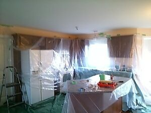 LOOKING FOR A PAINTER YOU CAN TRUST ? Windsor Region Ontario image 3