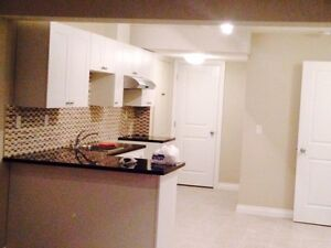 Spacious Basement for Rent in NE close to Saddle Town Circle