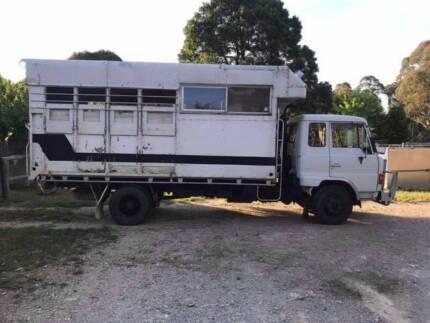 Horse Truck 1984 Hino FD 174 Econo Diesel