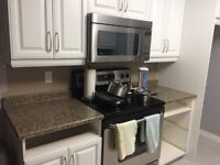 Countertop and Sink - Great Condition